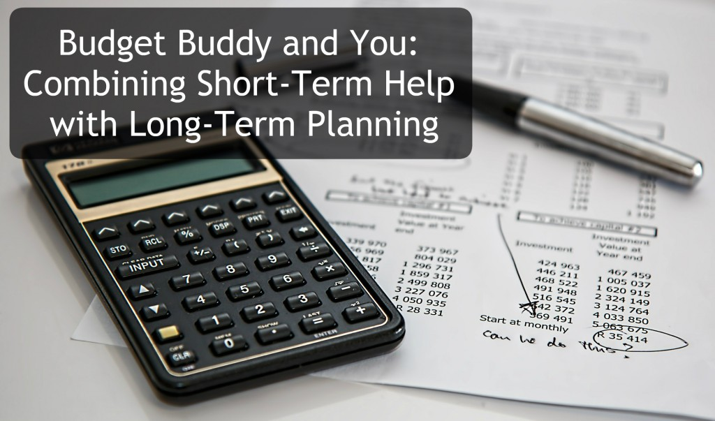 manage your money with the budget buddy
